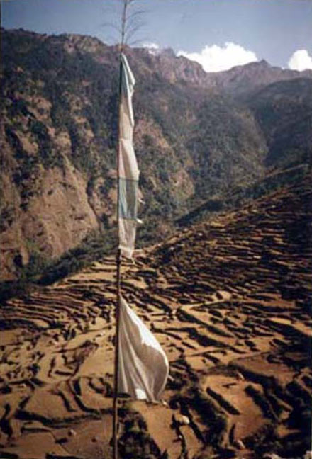 TIBETAN PRAYER FLAG FLIES HIGH OVER HIMALAYAN RICE FIELDS